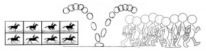 animation_principle